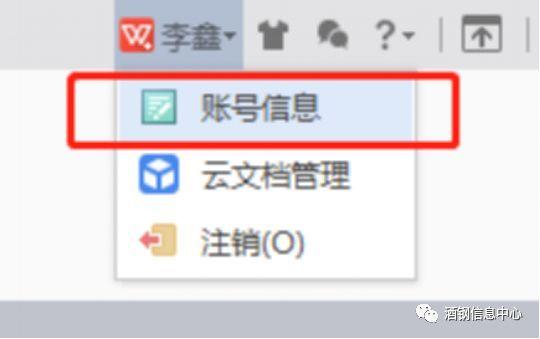 WPS云文档密码忘记怎么办?_进行