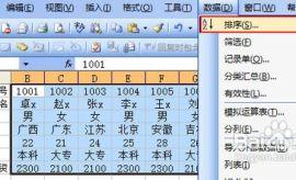 怎样在Excel中按行排序