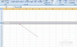 怎样调整excel表格的高度和宽度