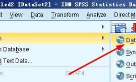 spss20.0中excel和txt格式的数据如何导入